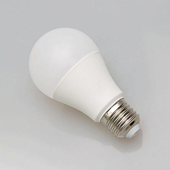 bulb-02-800-001