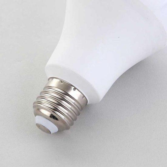 bulb-02-800-004