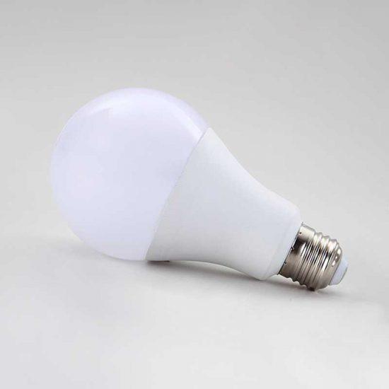bulb-02-800-006